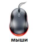 Мыши купить